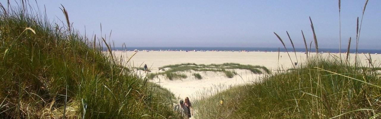 St. Peter-Ording Ferienwohnung Ufer: Foto Strandübergang
