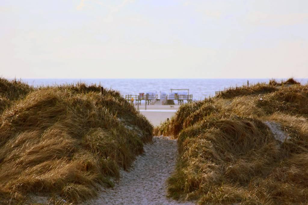 St. Peter-Ording Ferienwohnung Hund: Strand ORDING